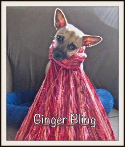 Gnger Bling